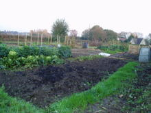 Image 1 for Lea  and Cleverton Allotments